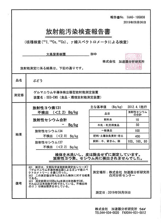 放射能汚染検査報告書